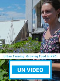 Urban Farming: Growing Food in NYC