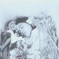 A Silent Day (Shizuka na ichinichi)