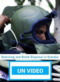 Demining and Bomb Disposal in Somalia