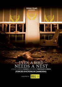 Even A Bird Needs A Nest